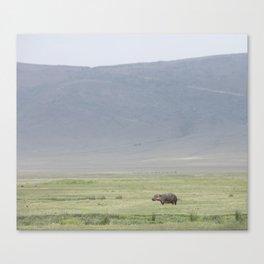 Hippo, please Canvas Print
