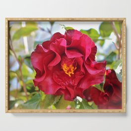 Red Wine Camellia Serving Tray
