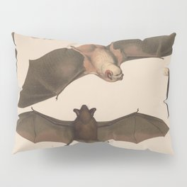 Vintage Flying Bat Illustration (1874) Pillow Sham