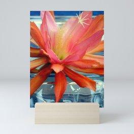 The Water Lily Cactus Mini Art Print