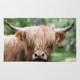 Portrait of a cute Scottish Highland Cattle Rug