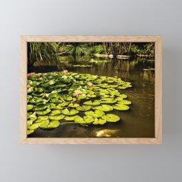 Water Lily Pond at Huntington Gardens No. 2 Framed Mini Art Print