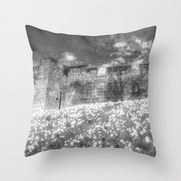 York City Walls Throw Pillow
