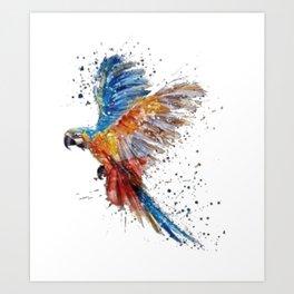 Raibow Parrot Art Print