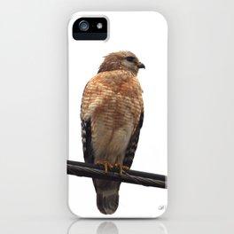 Falcon Wire iPhone Case