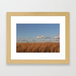 Fluffy Little Clouds Framed Art Print