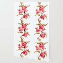 Apple Blossoms Wallpaper