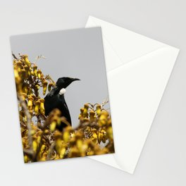 New Zealand Tui bird Stationery Cards