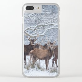 Red deers  from wintry Killarney National Park Clear iPhone Case