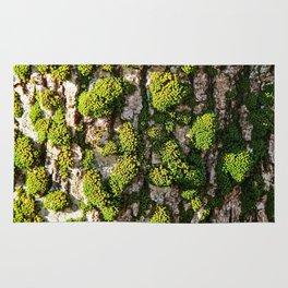 Green Moss Beauty Rug