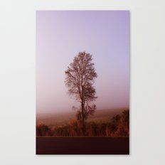 Standing alone in the fog Canvas Print
