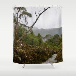 Eucalypt forest Shower Curtain