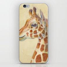 Giraffe #2 iPhone & iPod Skin