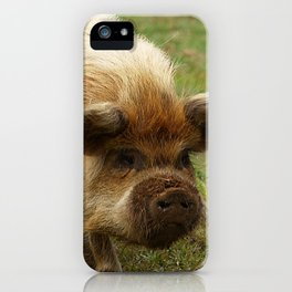 March of the Ginger Pig iPhone Case
