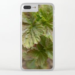Currant Spring Leaves Clear iPhone Case
