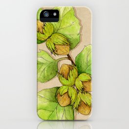 Corylus Avellana iPhone Case