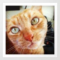 jenna kutcher Art Prints featuring Jenna by Pop Art Pet Portraits
