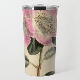Rhododendron oreotrephes, Ericaceae Travel Mug