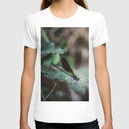 Slider control T-shirt