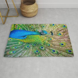 Beautiful Peacock (Color) Rug