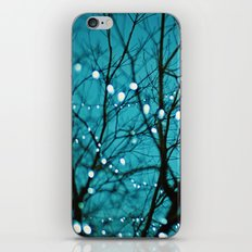 tree photograph. Wonder iPhone & iPod Skin