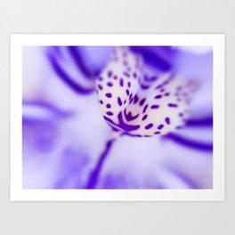 Playful Colors Orchid Art Print