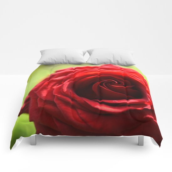 Red rose in LOVE - Roses- Valentine Comforters