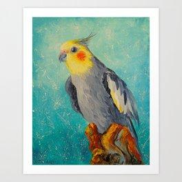 Corella parrot Art Print