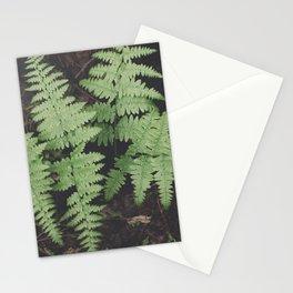 John Muir Fern, Yosemite Stationery Cards