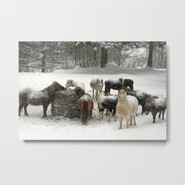Winter scene color Metal Print