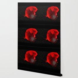 Diving in Red Wallpaper