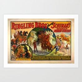 Barnum & Bailey horse poster Art Print