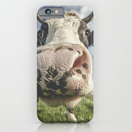 Inquisitive Cow iPhone Case