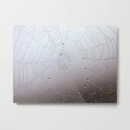 Dew on a Spider Web Metal Print
