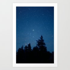 Starry Night Above the Forest Art Print