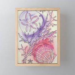 Sand Dollar & Scallop Shell Framed Mini Art Print