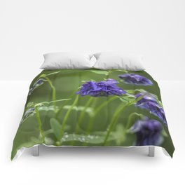 Purple Columbine Comforters
