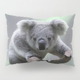 Koala Bear Pillow Sham