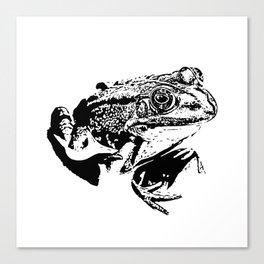 black frog IV Canvas Print