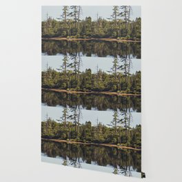 trees and reflections Wallpaper