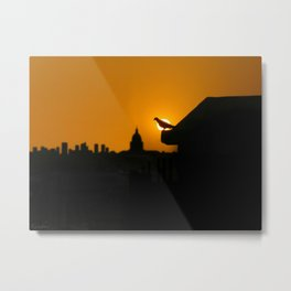 Pigeon Eclipse2 Metal Print