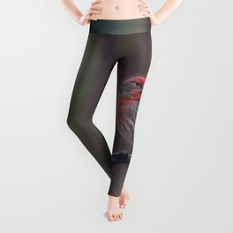 Pretty Bird - House Finch Leggings