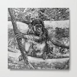 AnimalArtBW_Chimpanzee_20170905_by_JAMColorsSpecial Metal Print