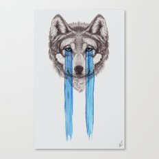 Don't Cry Wolf Canvas Print