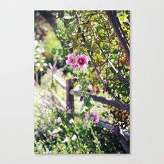 Stroll in the Garden Canvas Print