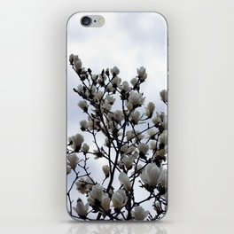 magnolia kobus iPhone Skin
