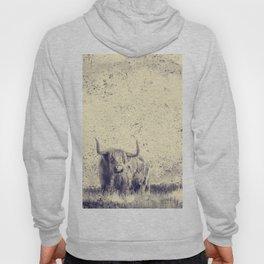 Majestic Buffalo Hoody