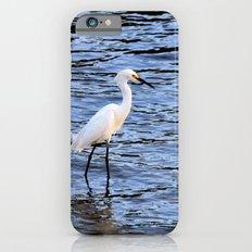 Cs000-73 Slim Case iPhone 6s