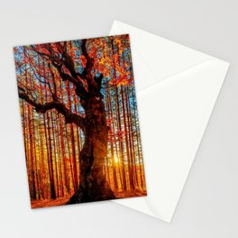 Majestic woods Stationery Cards