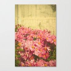 Little Pink Flowers Canvas Print